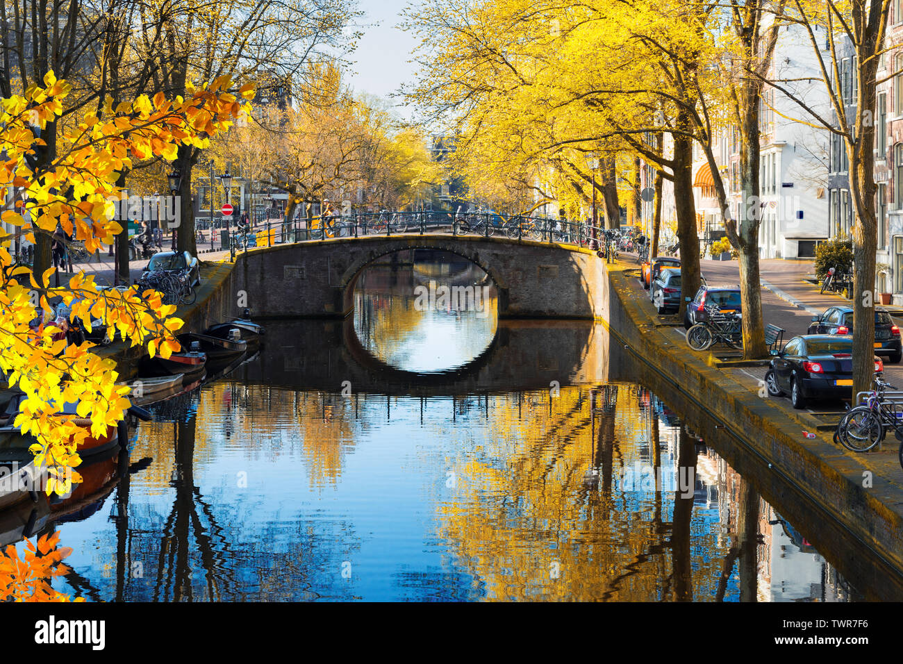 Bridge and tree over canal with mirror reflections, Amsterdam at fall, Netherlands - Stock Image