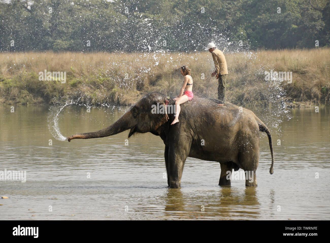 Naked girl riding elephant — img 9