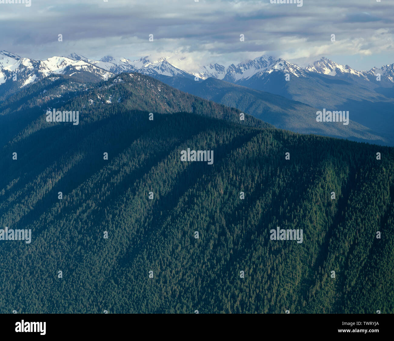 USA, Washington, Olympic National Park, Late springtime view south from near Hurricane Ridge towards ridgeline and Elwah River Valley (top right). - Stock Image