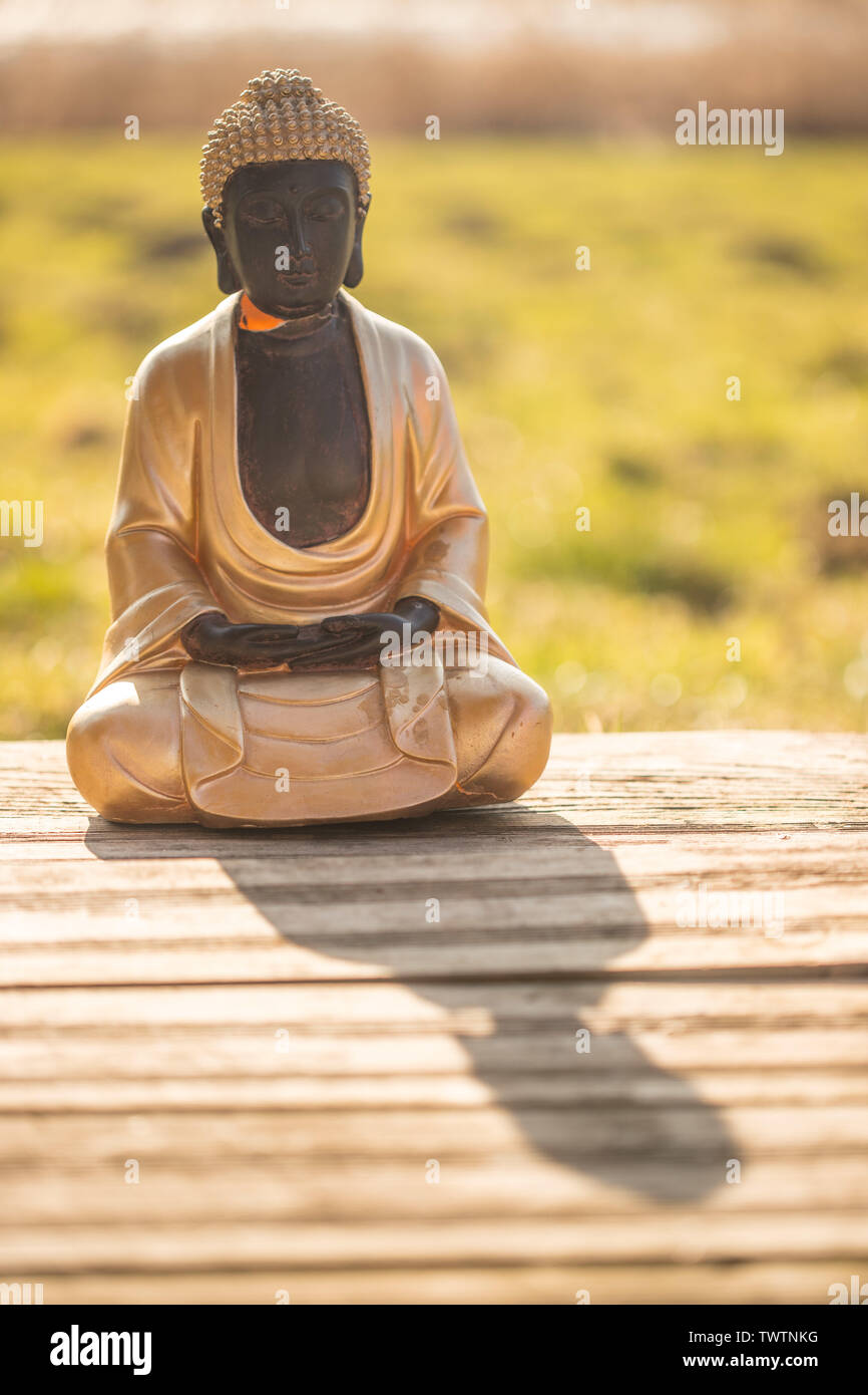 Buddha statue at an Indian temple, summer time. Text space. Stock Photo