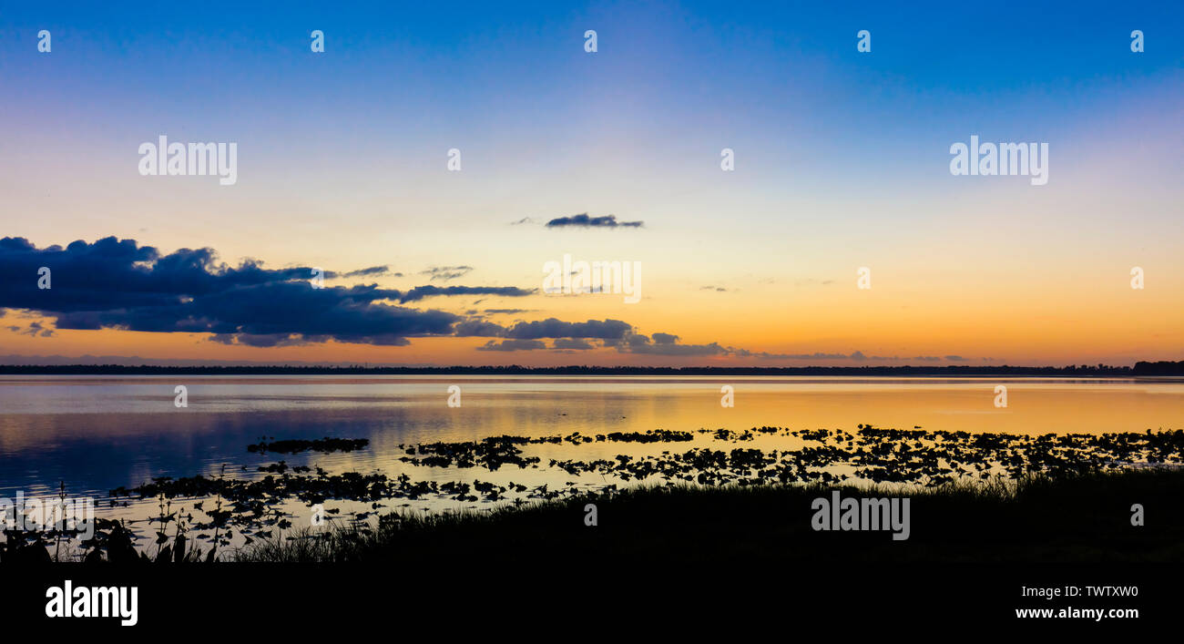 Before sunrise over Lake Pierce in Lake Wales Polk County Florida in the United States - Stock Image