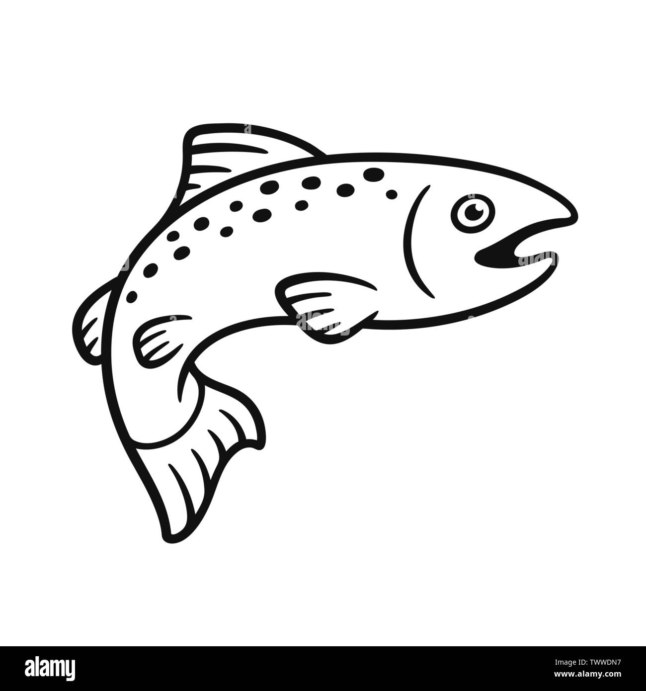 Black And White Salmon Drawing Simple Hand Drawn Fish Illustration Isolated Vector Clip Art Stock Vector Image Art Alamy