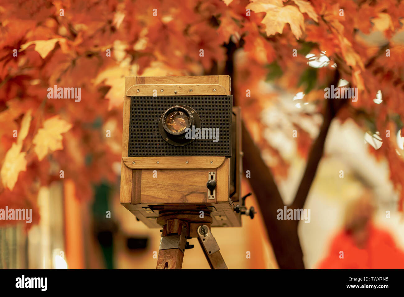 Vintage wooden view photocamera and tripod. Cocept retro, nostalgia and time. Autumn background - Stock Image