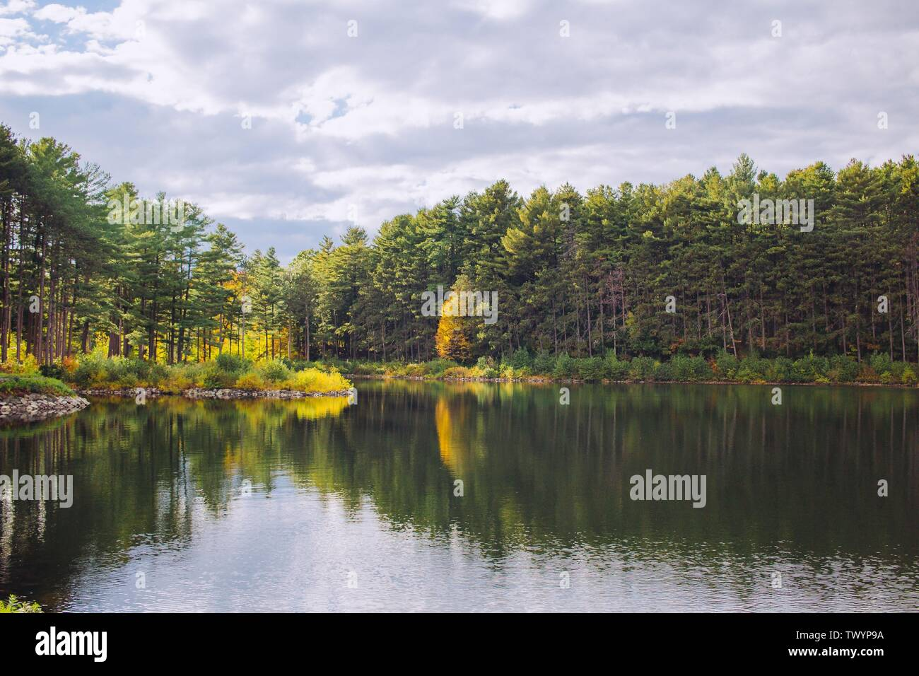 A beautiful lake in a forest with trees reflections in the water and cloudy sky - Stock Image