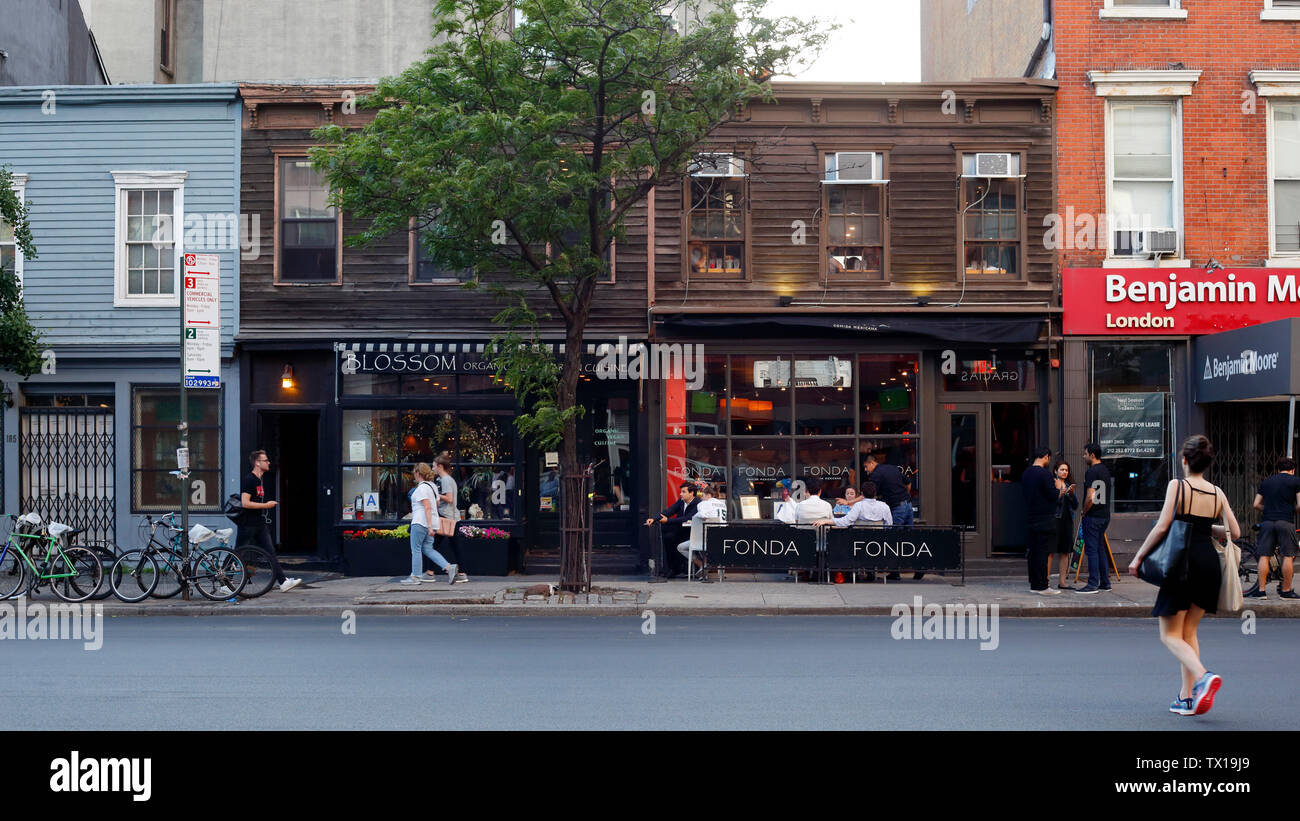 Vegetarian Cafe Exterior High Resolution Stock Photography And Images Alamy