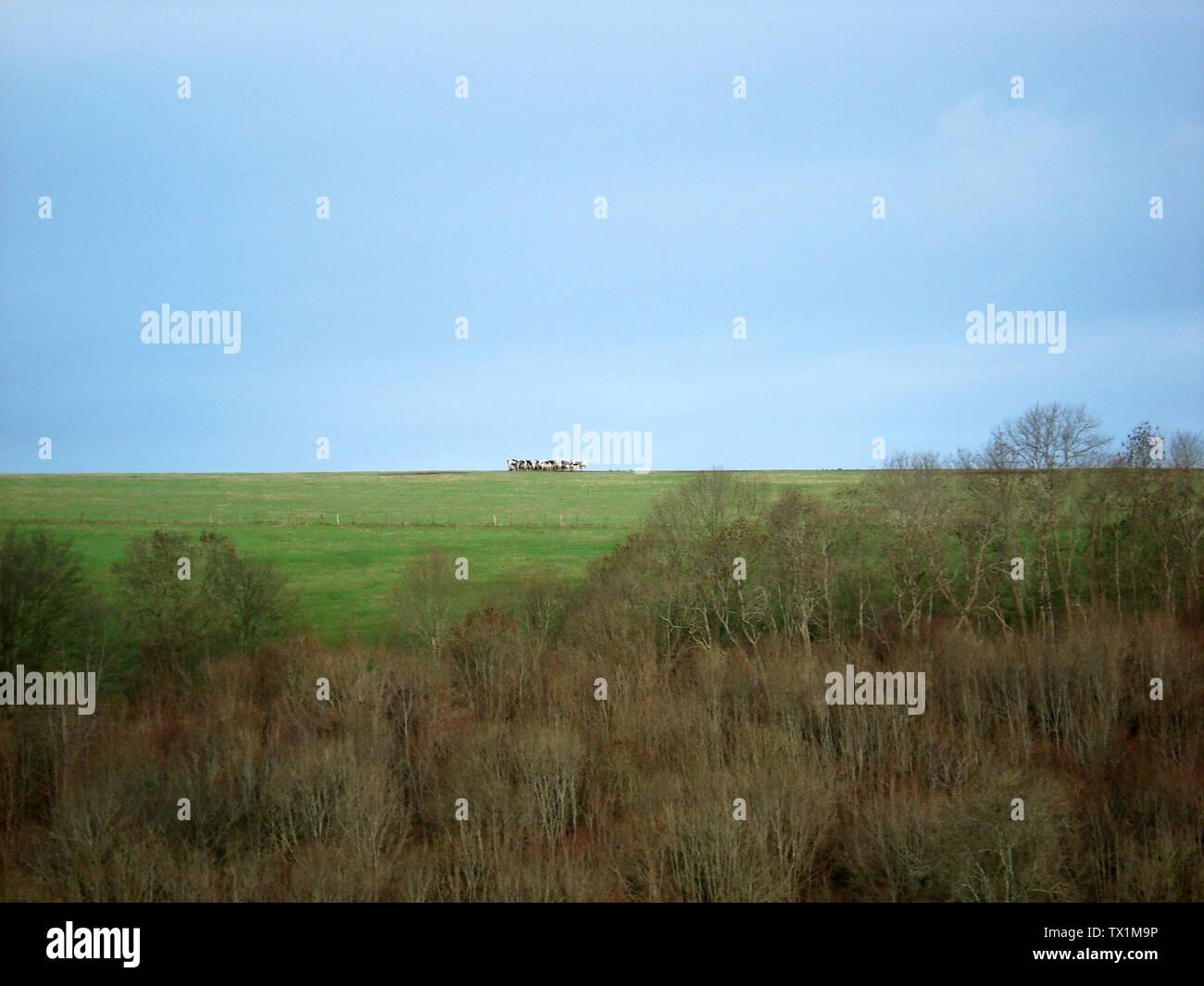 P 87 Stock Photos & P 87 Stock Images - Alamy