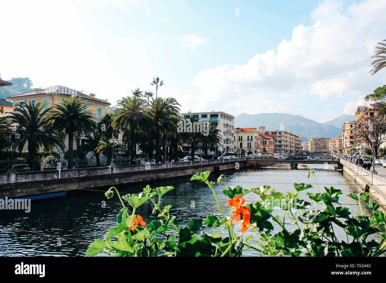 Rapallo, Italy - 03 27 2013: flowers by the river Boate. View of the streets of Rapallo. - Stock Image