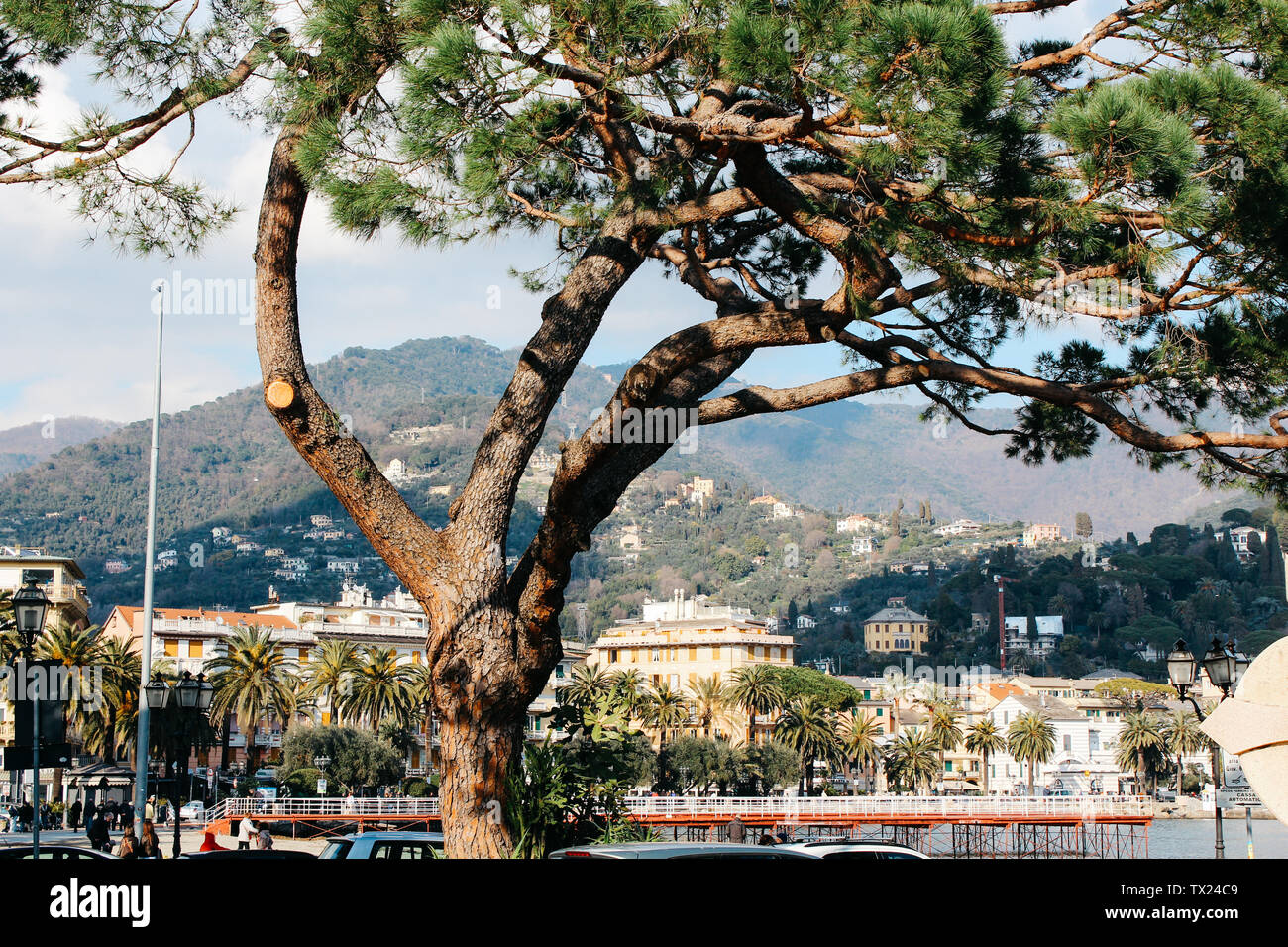 Rapallo, Italy - 03 27 2013: View of the streets of Rapallo - Stock Image