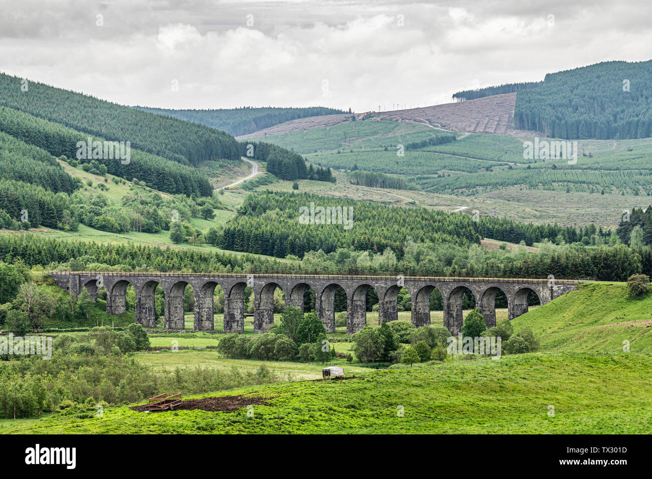 Hawick, Scottish Borders, UK. 15th June 2019. The disused Shankend viaduct 6 miles south of Hawick, which once carried trains south to Carlisle on the - Stock Image