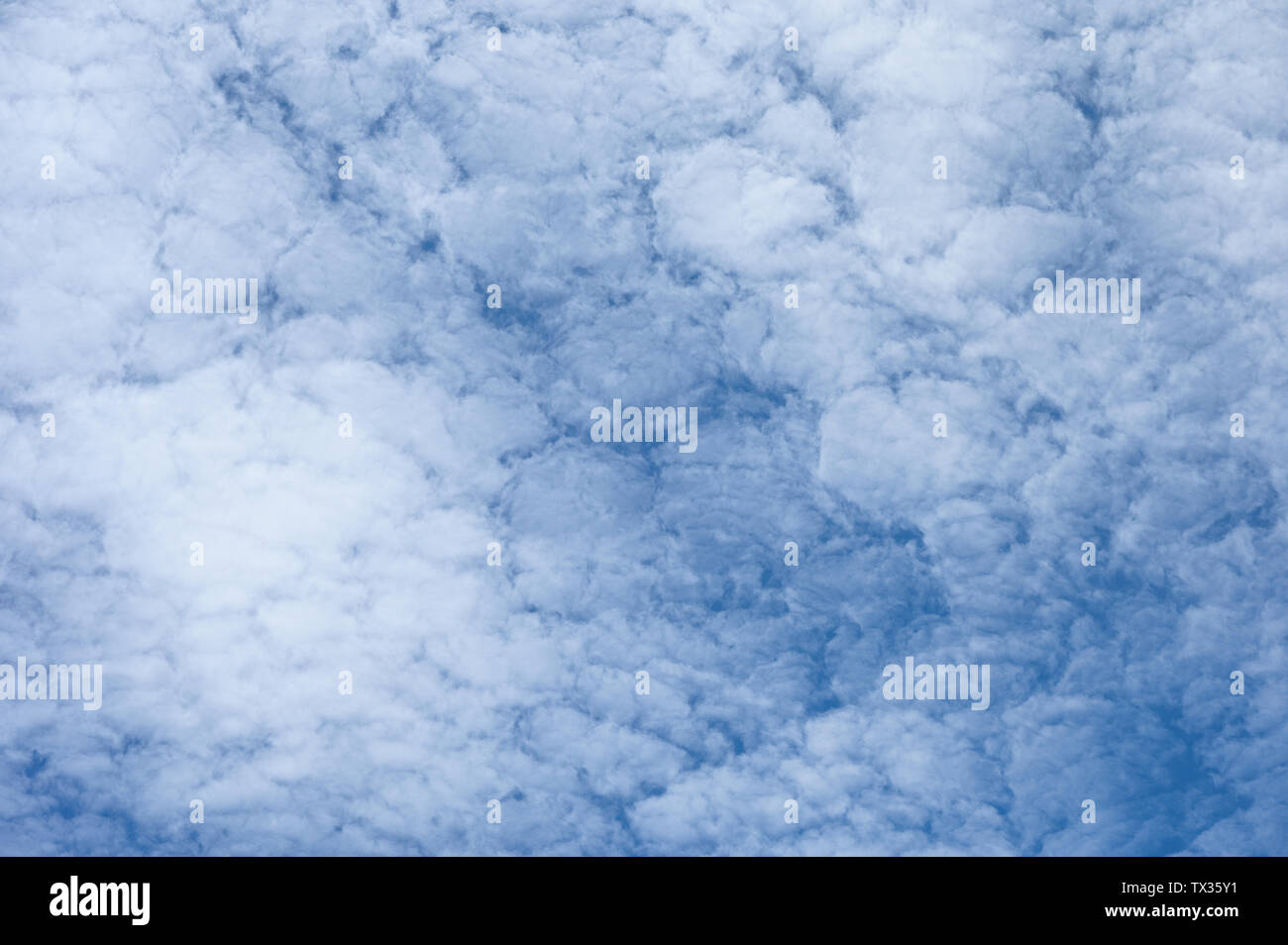 Altocumulus white clouds on blue sky background - Stock Image