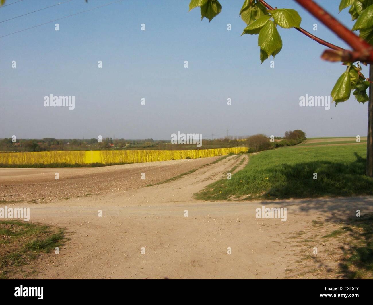 'Deutsch: Felder am Thieberg in Neuenkirchen; 2007; Self-photographed; Zumthie; ' - Stock Image