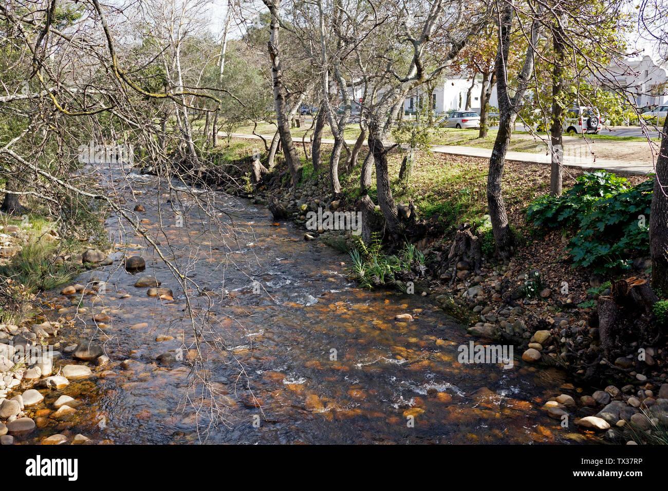 Eerste Rivier trail , Stellenbosch, South Africa Stock Photo