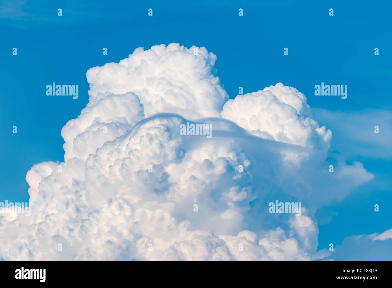 Blue sky and white clouds. Sunny day - Stock Image