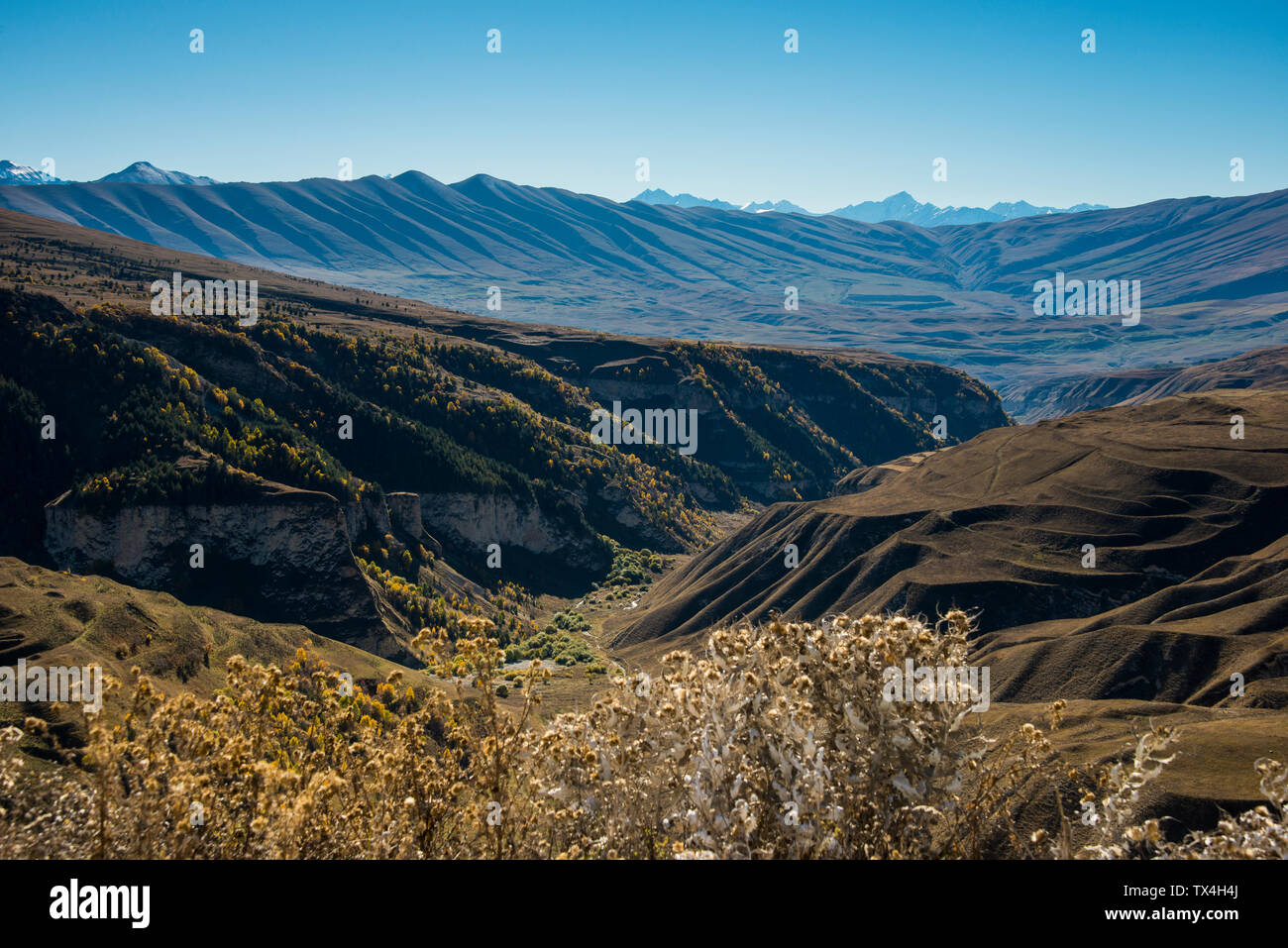 Russia, Caucasus, Chechnya, Overlook over the Chechen mountains - Stock Image