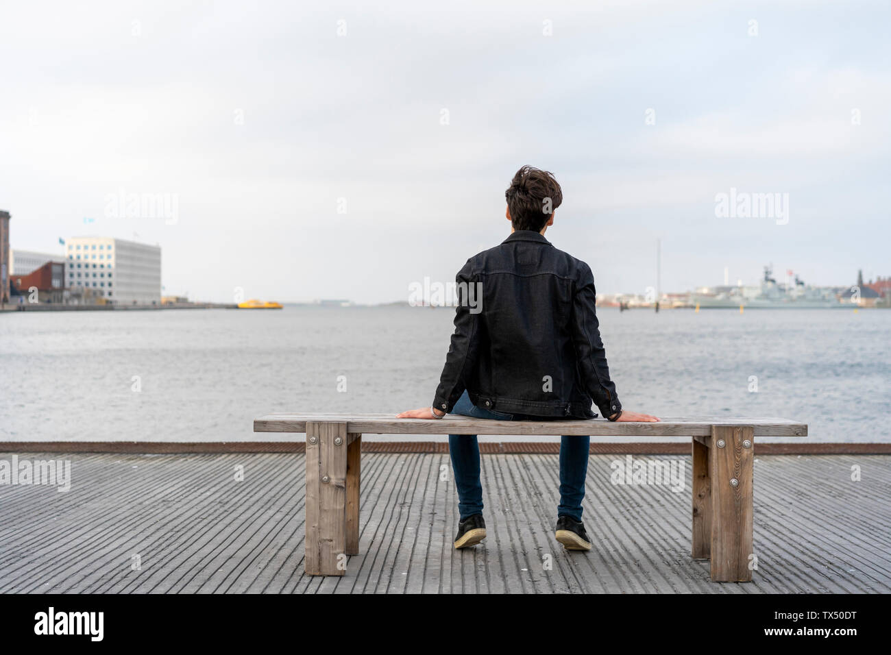 Denmark, Copenhagen, rear view of young man sitting on a bench at the waterfront - Stock Image