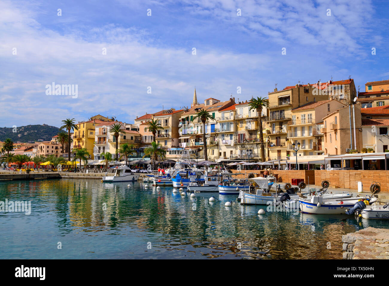 France, Corsica, Calvi, boats in the harbour - Stock Image