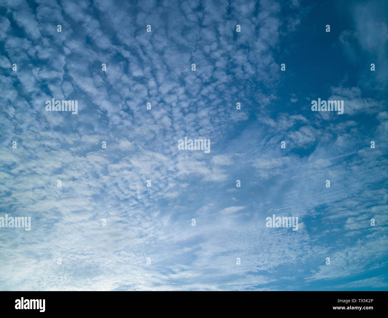 Blue sky with white feather clouds, sunny day, summer - Stock Image