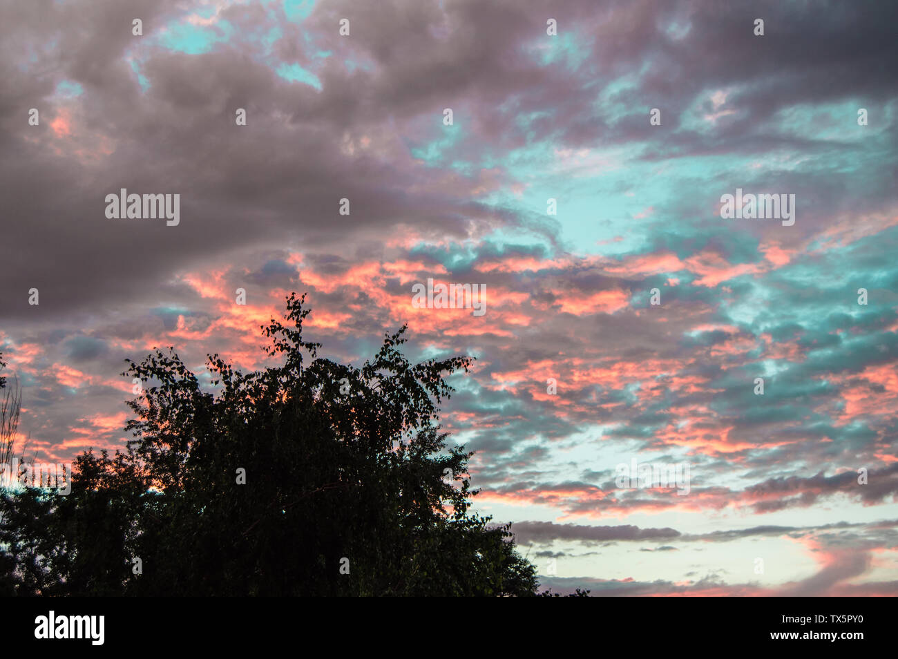 Colorful summer sunset after rain with dramatic blue and pink clouds, weather concept, seasonal specifics, copy space. - Stock Image