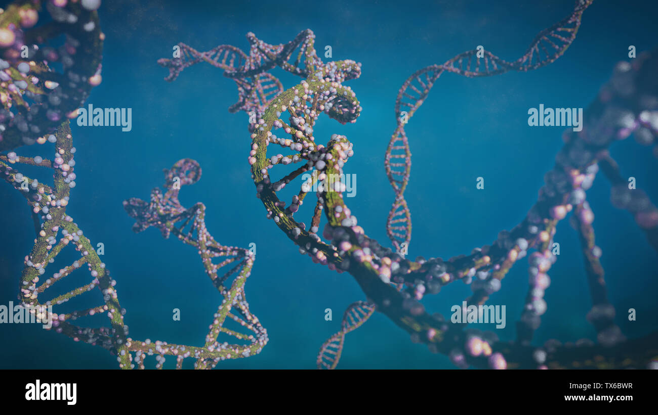DNA molecule, double helix carrying genetic instructions (3d science illustration) Stock Photo