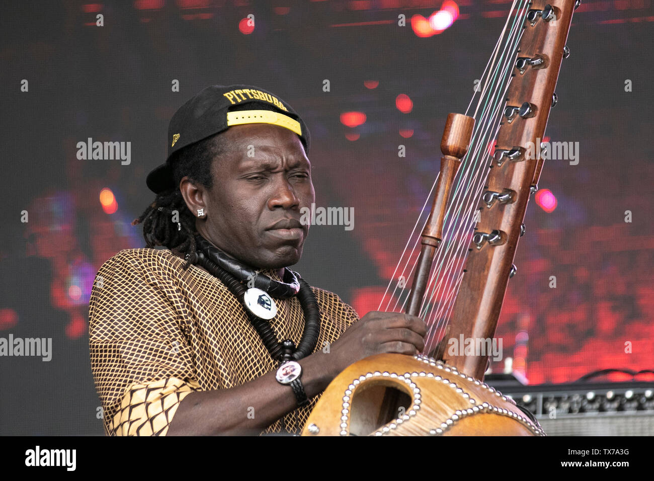 West African Stringed Instrument Stock Photos & West African
