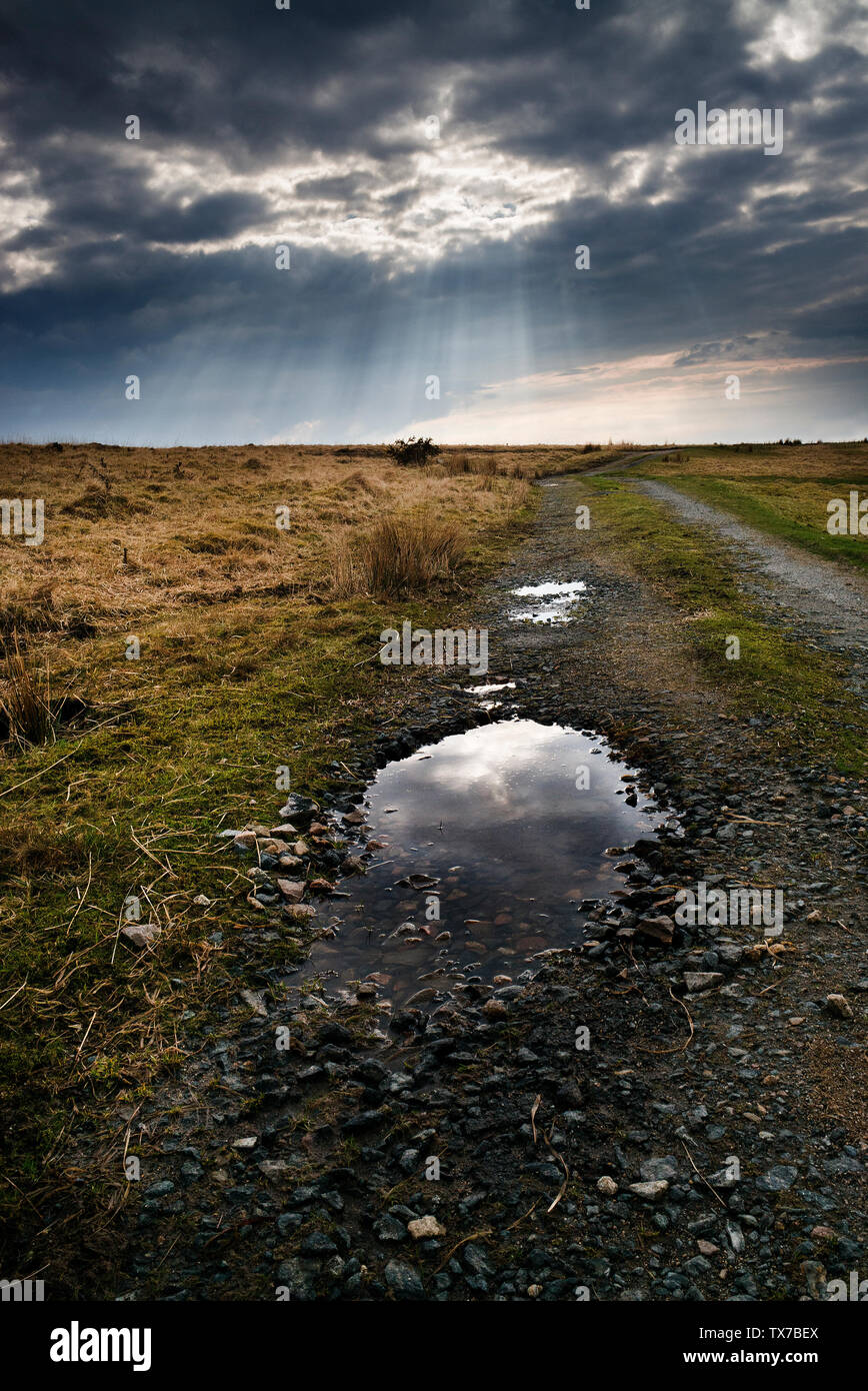 Bodmin moor after storm,dark sky sun breaking through on to granite stones and puddles on Bodmin moor, Stock Photo