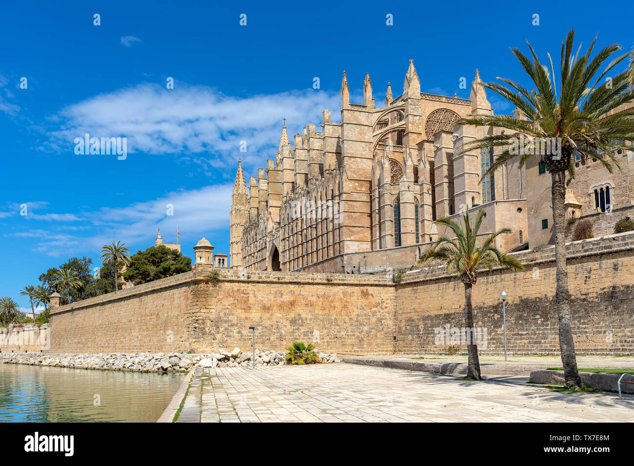 Famous Cathedral of Santa Maria under blues sky as seen from Parc de la Mar in Palma de Mallorca, Spain. - Stock Image