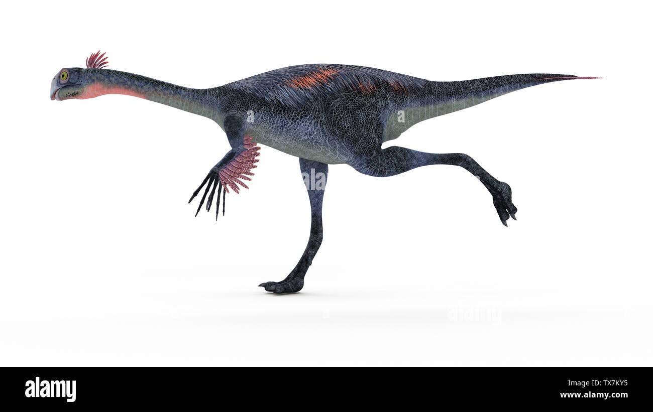 3d rendered illustration of a gigantoraptor Stock Photo