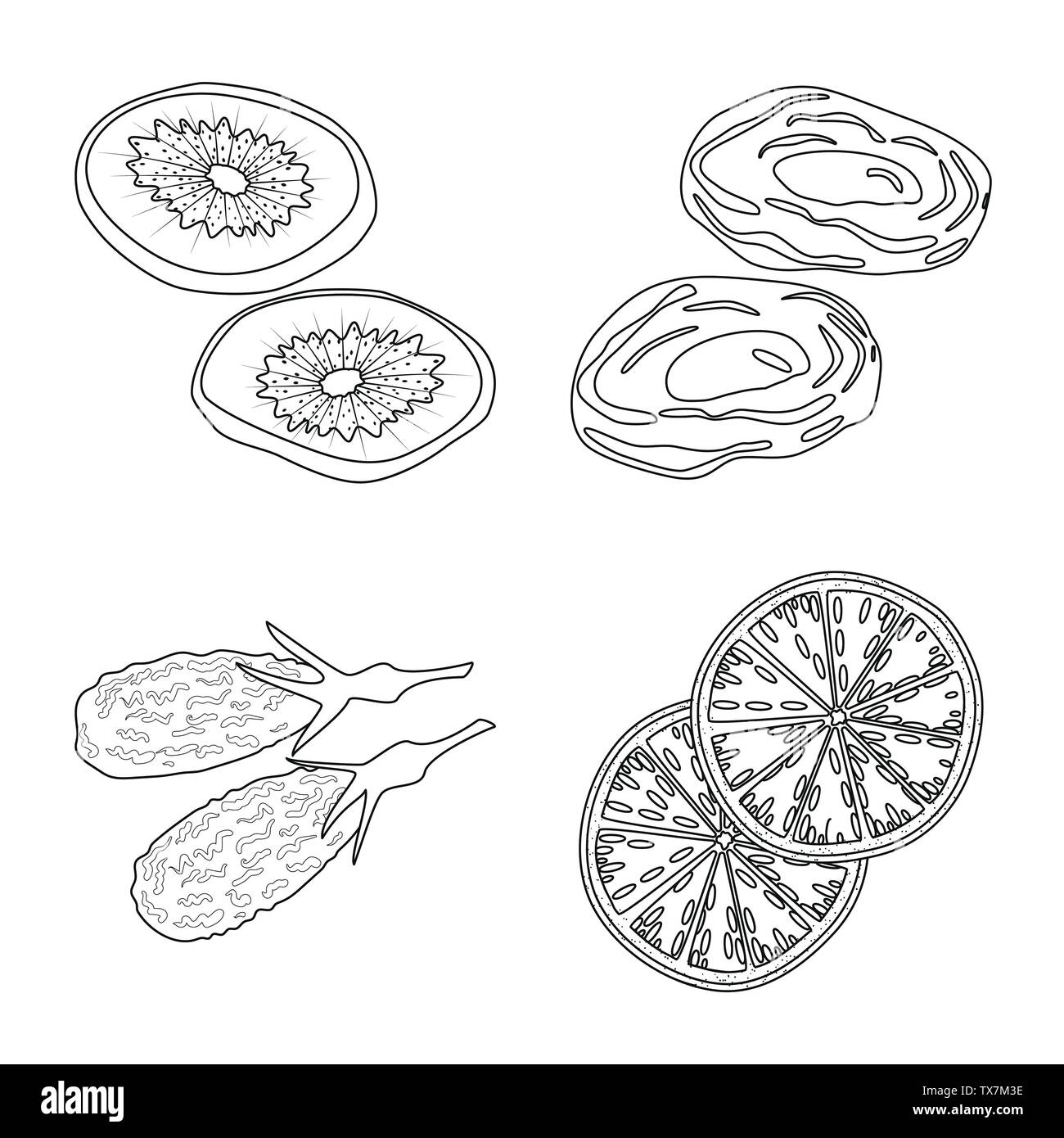 Vector illustration of food  and raw  icon. Set of food  and nature  stock symbol for web. - Stock Image