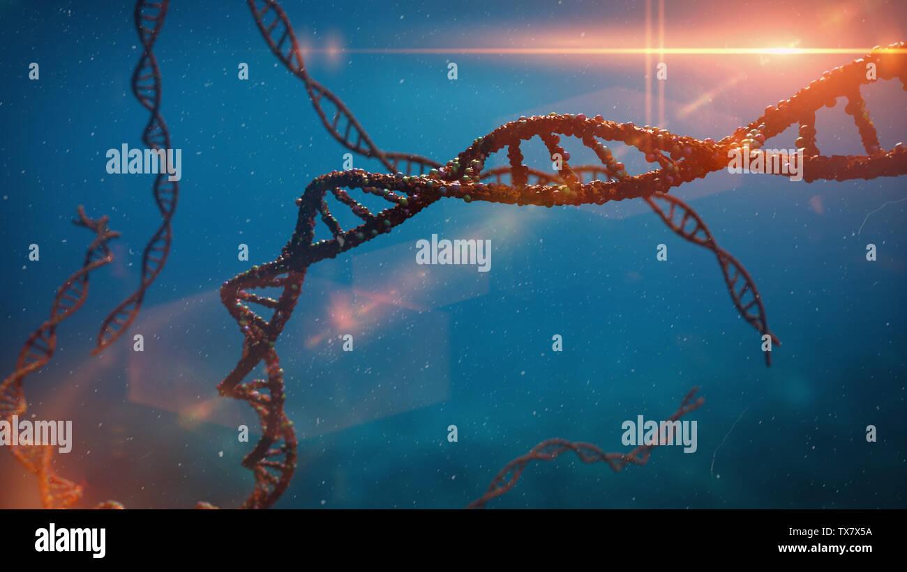 DNA molecule, double helix carrying genetic instructions (3d science rendering) Stock Photo