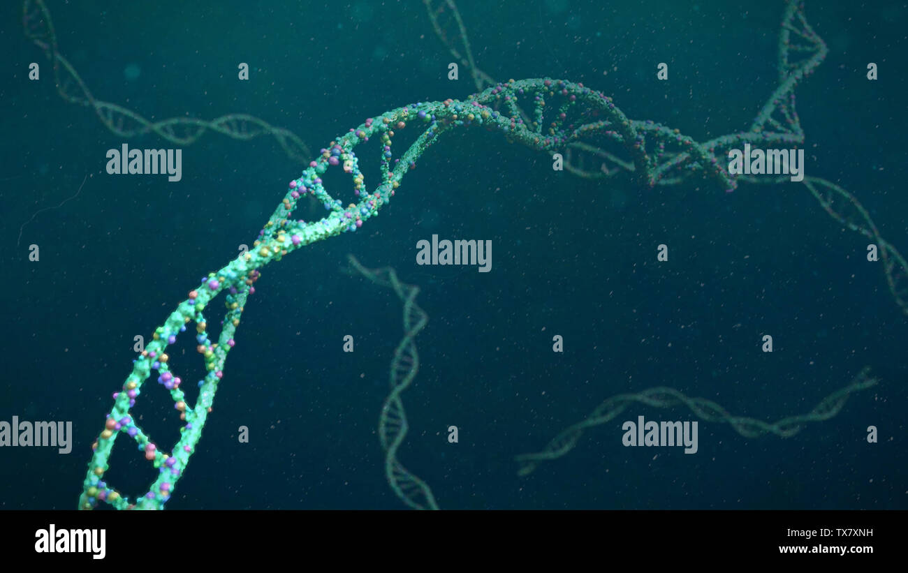 DNA structure, molecule concept, double helix carrying genetic instructions (3d science rendering) Stock Photo