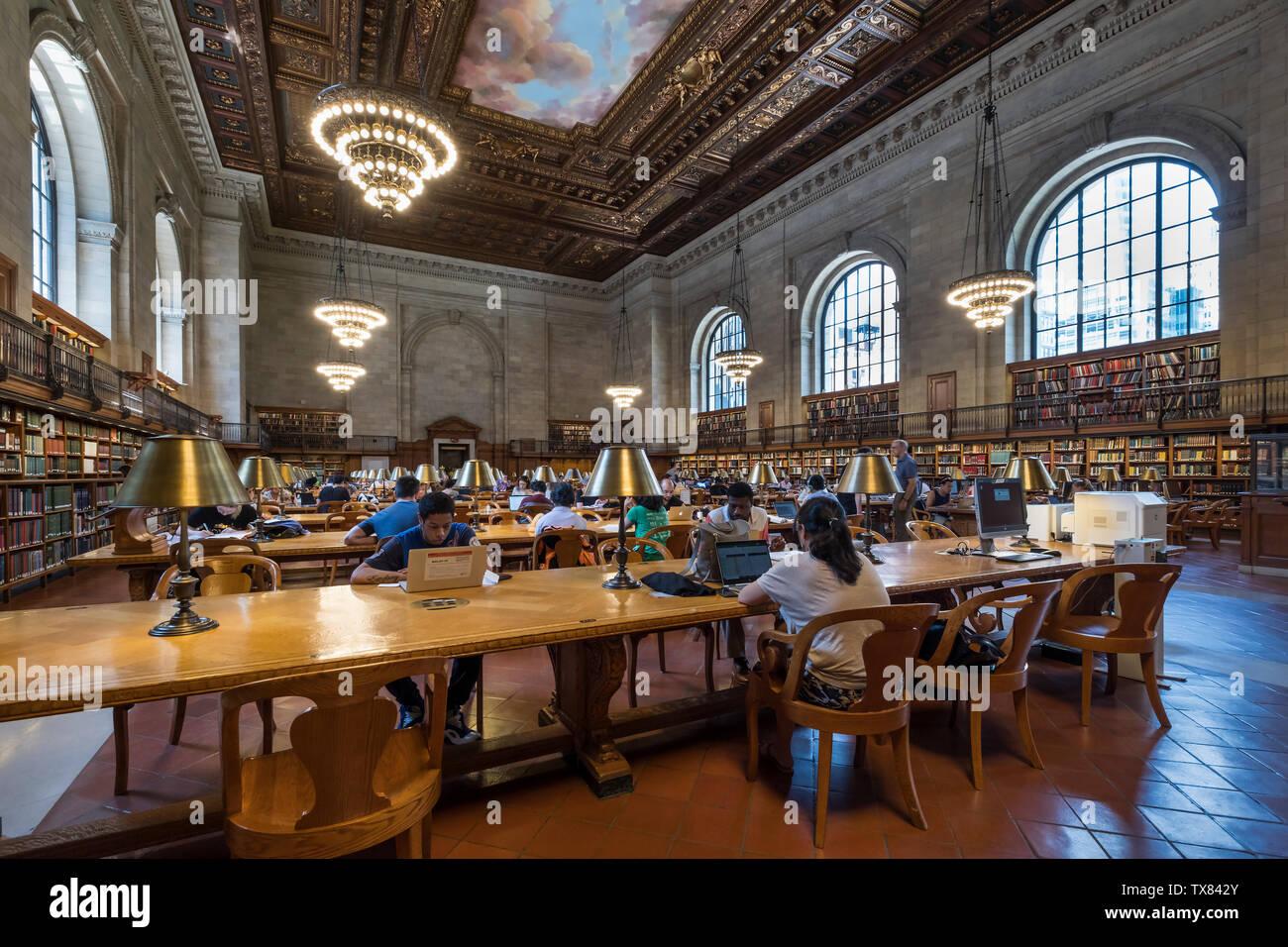 New York Public Library Ceiling Stock Photos & New York