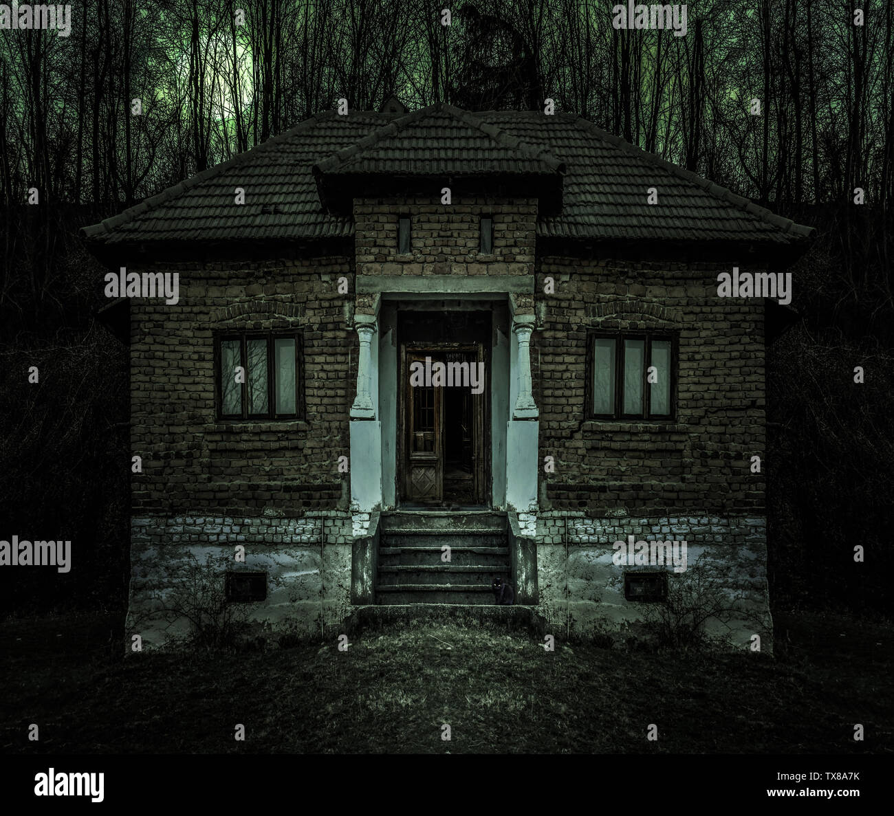 Old Creepy Haunted House With Dark Horror Atmosphere And Scary Details Ancient Abandoned Mansion With Fool Moon And Black Cat In Frightening Scene Li Stock Photo Alamy