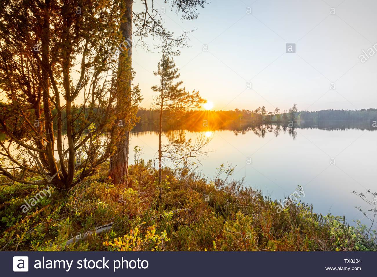 Lake sunset finland - Stock Image