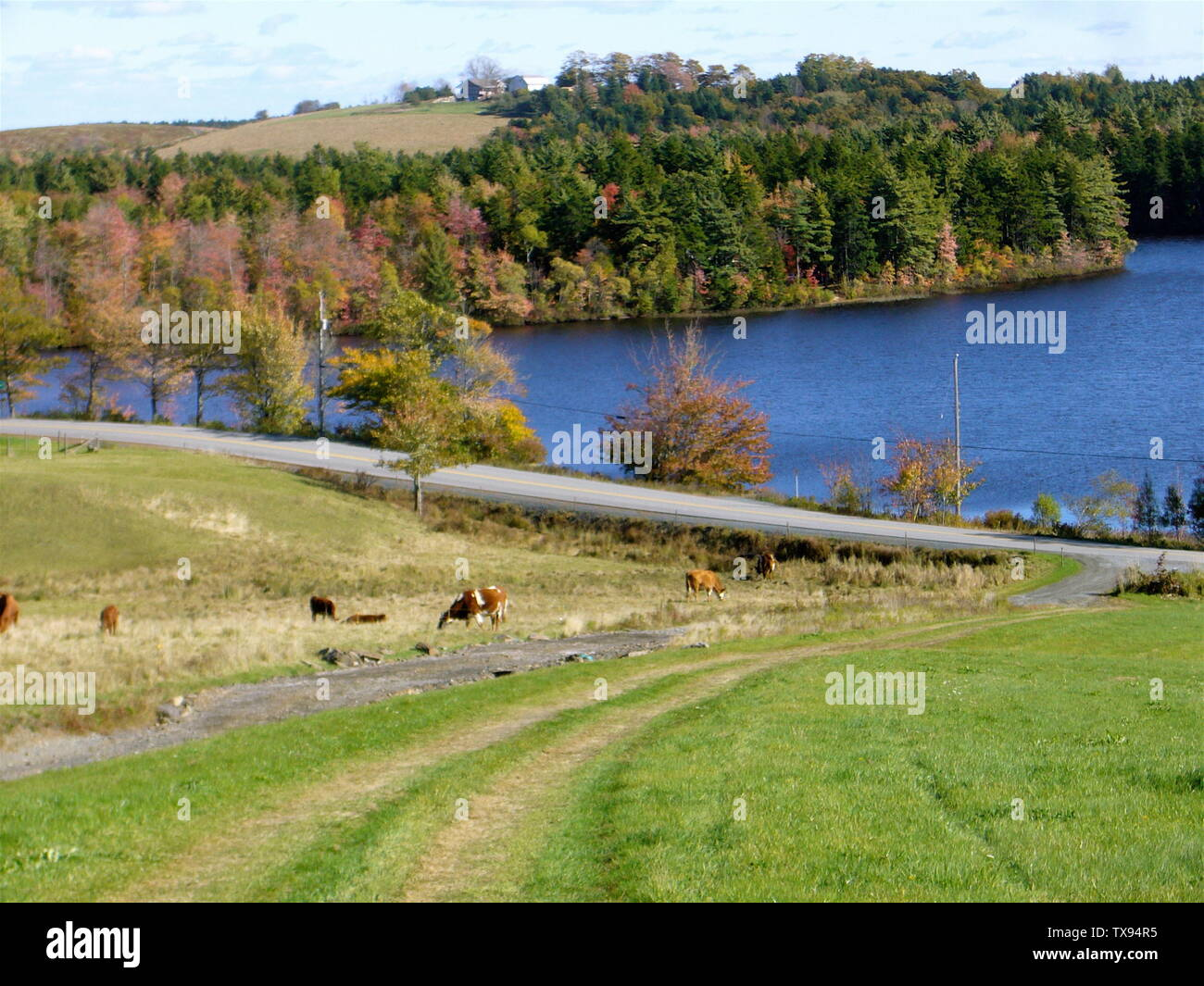 'A view of the Isaac Wile Hill across Matthew Lake, Waterloo, Nova Scotia.; 17 October 2007; Own work by the original uploader Blake Wile; Madereugeneandrew; ' - Stock Image