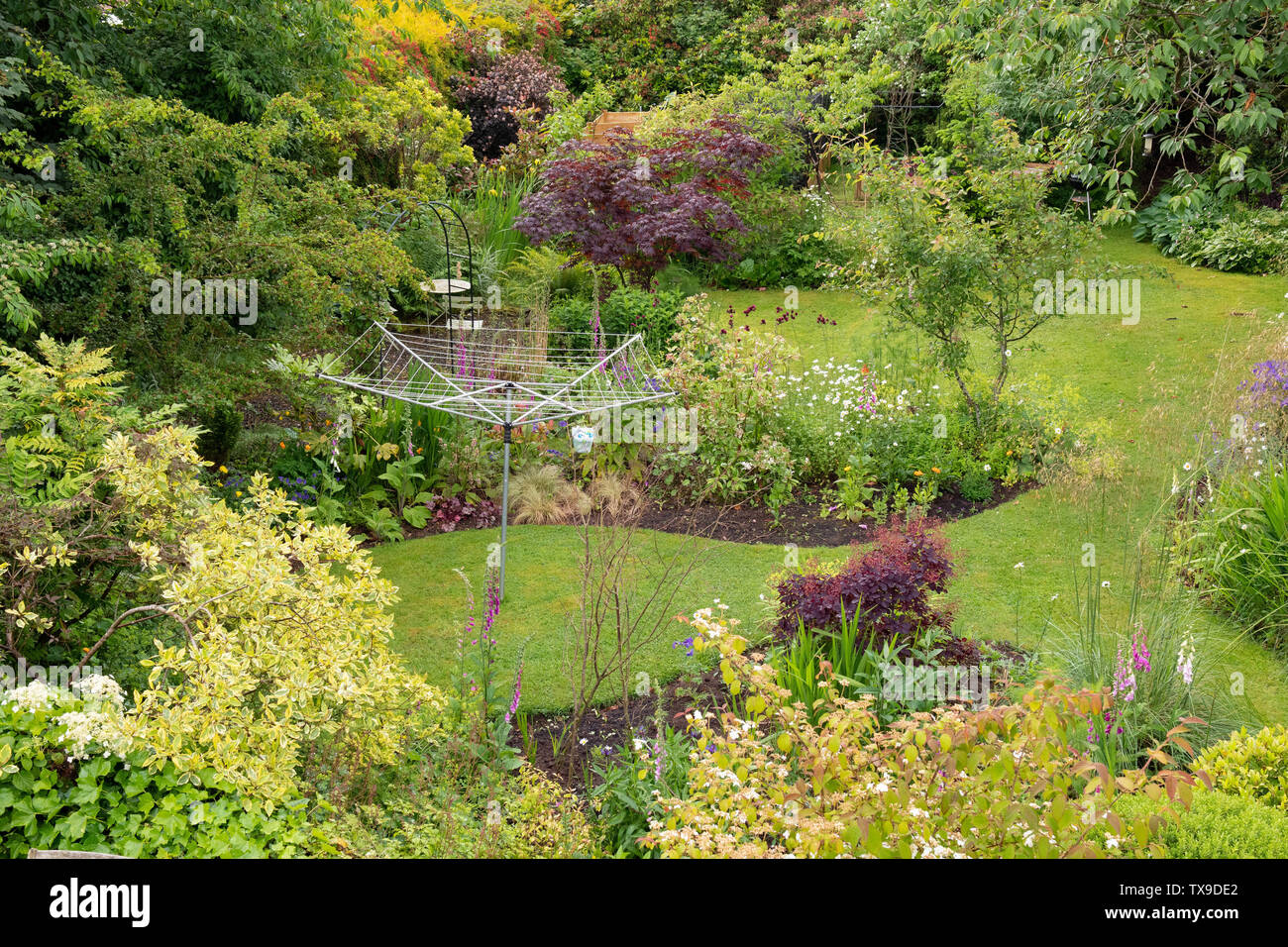 Back Garden In Early Summer Viewed From Upstairs Bedroom Window With Rotary Dryer And Country Style Mixed Borders Stirlingshire Scotland Uk Stock Photo Alamy