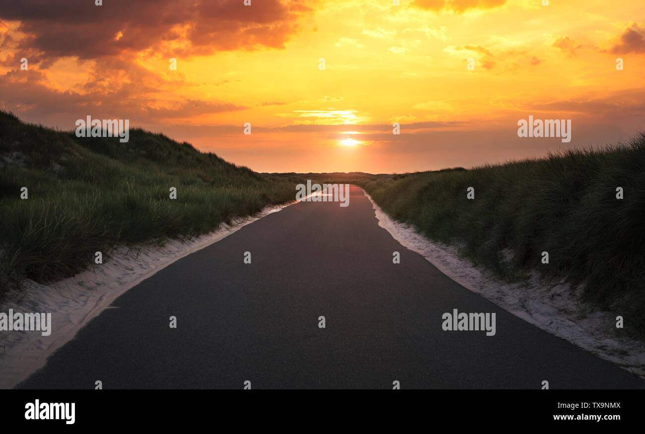 Empty street leading nowhere through dunes with sand and grass, at the golden hour of the sunrise, on the island Sylt, Germany. - Stock Image
