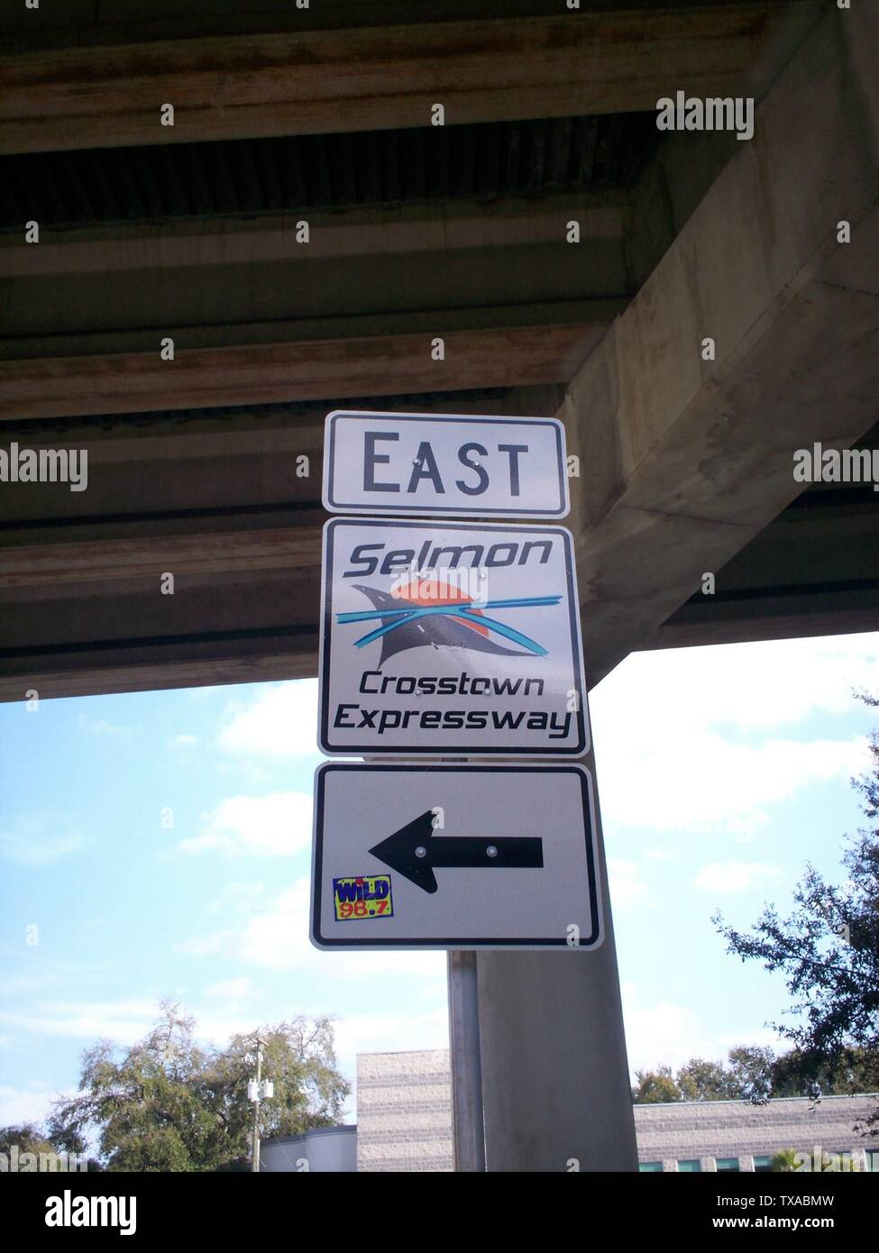 'English: The new shield/logo for the Lee Roy Selmon Crosstown Expressway - State Road 618 (Florida).; 6 August 2006(according to Exif data); Own work; User:Wslupecki; ' - Stock Image