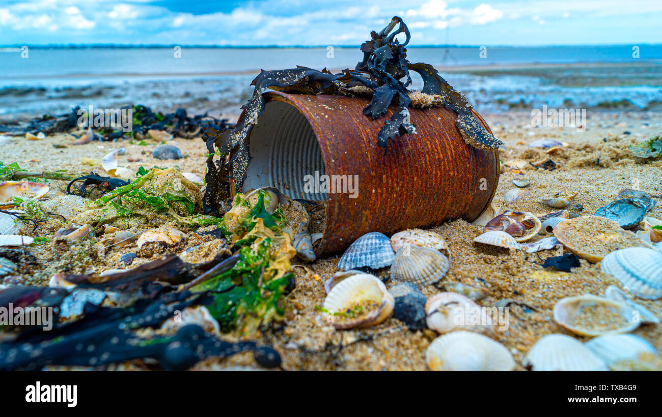 close up of rusted can weathered on beach, save our oceans, pollution in the waters and ocean - Stock Image
