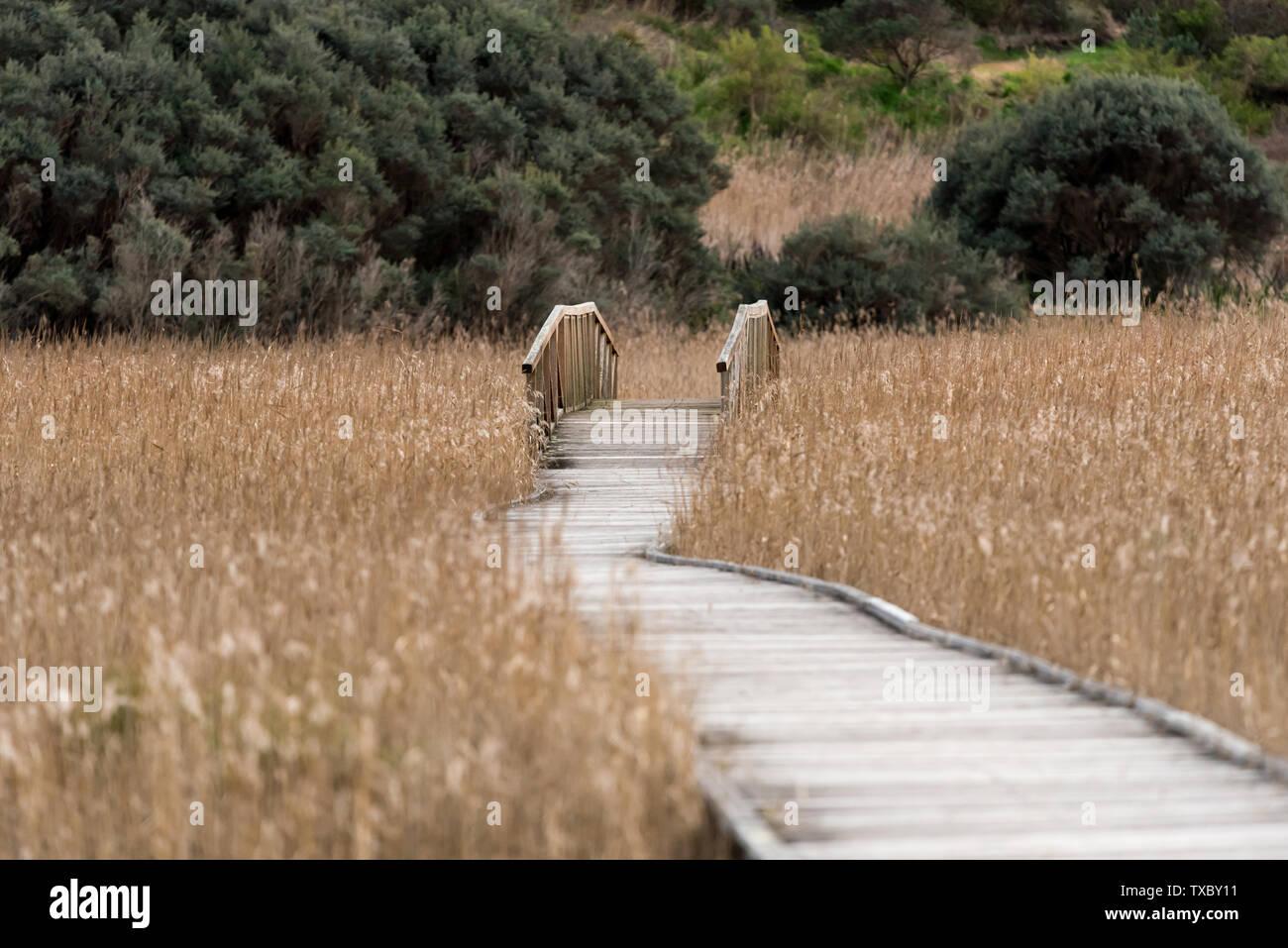 Wooden deck causeway bridge running through dry fields Stock Photo