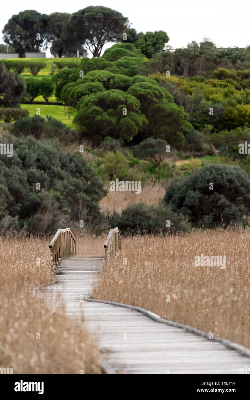 Wooden deck causeway bridge running through dry fields Stock Photo