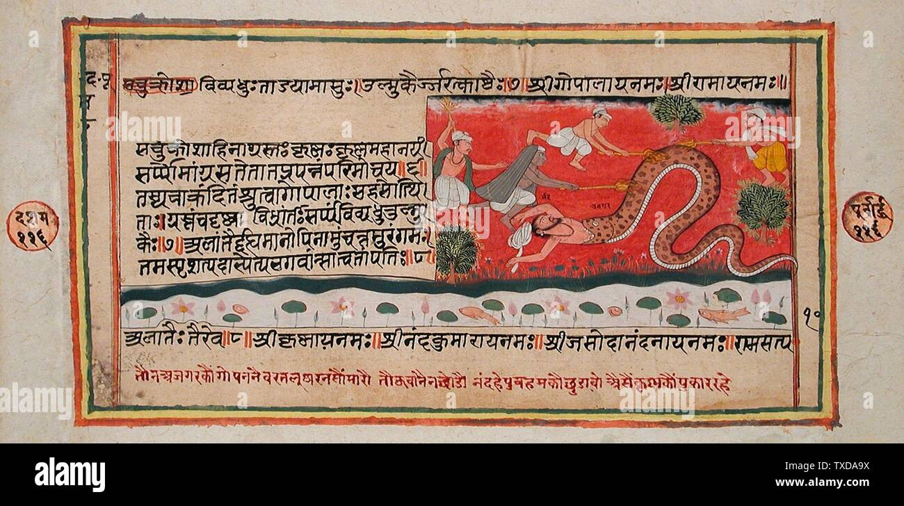 """The Python Swallows Nanda (Recto), Singeing of the Python (Verso), Folio from a Bhagavata Purana (Ancient Stories of the Lord); English:  India, Rajasthan, Mewar, circa 1600-1650 Books Opaque watercolor and ink on paper Sheet:  9 1/4 x 16 in. (23.49 x 40.64 cm); Image:  4 1/8 x 11 1/2 in. (10.47 x 29.21 cm) Gift of Diandra and Michael Douglas (M.81.271.2) South and Southeast Asian Art; between circa 1600 and circa 1650 date QS:P571,+1650-00-00T00:00:00Z/7,P1319,+1600-00-00T00:00:00Z/9,P1326,+1650-00-00T00:00:00Z/9,P1480,Q5727902; "" Stock Photo"