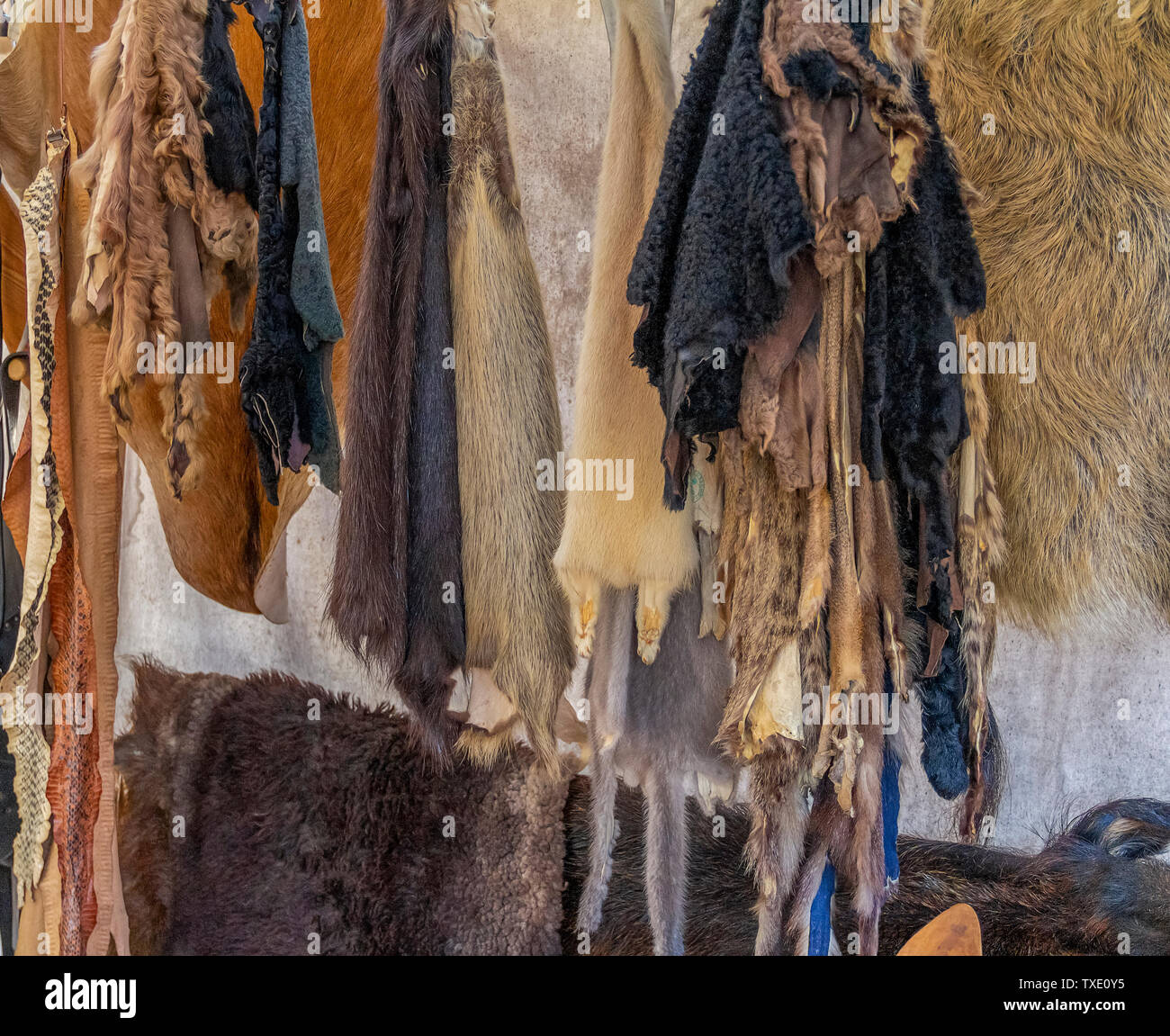 various hanging fur and leather pieces seen at a medieval market - Stock Image