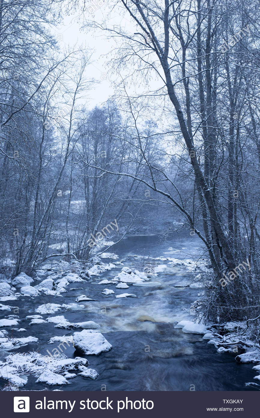 Winter river - Stock Image
