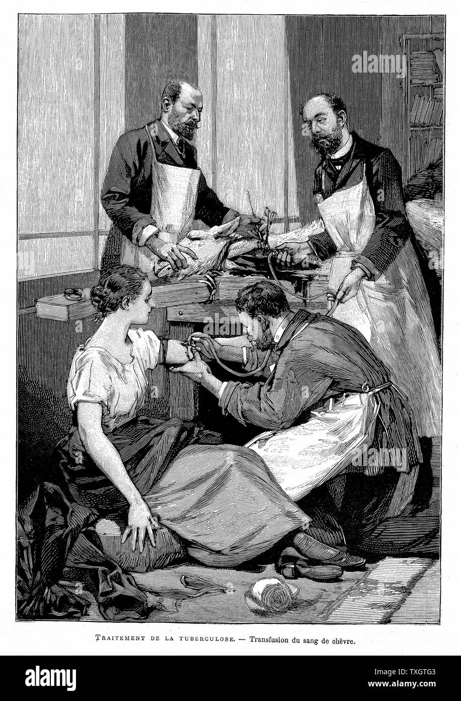 Tubercular patient being given direct blood transfusion from a goat at Dr Bernheim's clinic 1891 Engraving Paris - Stock Image