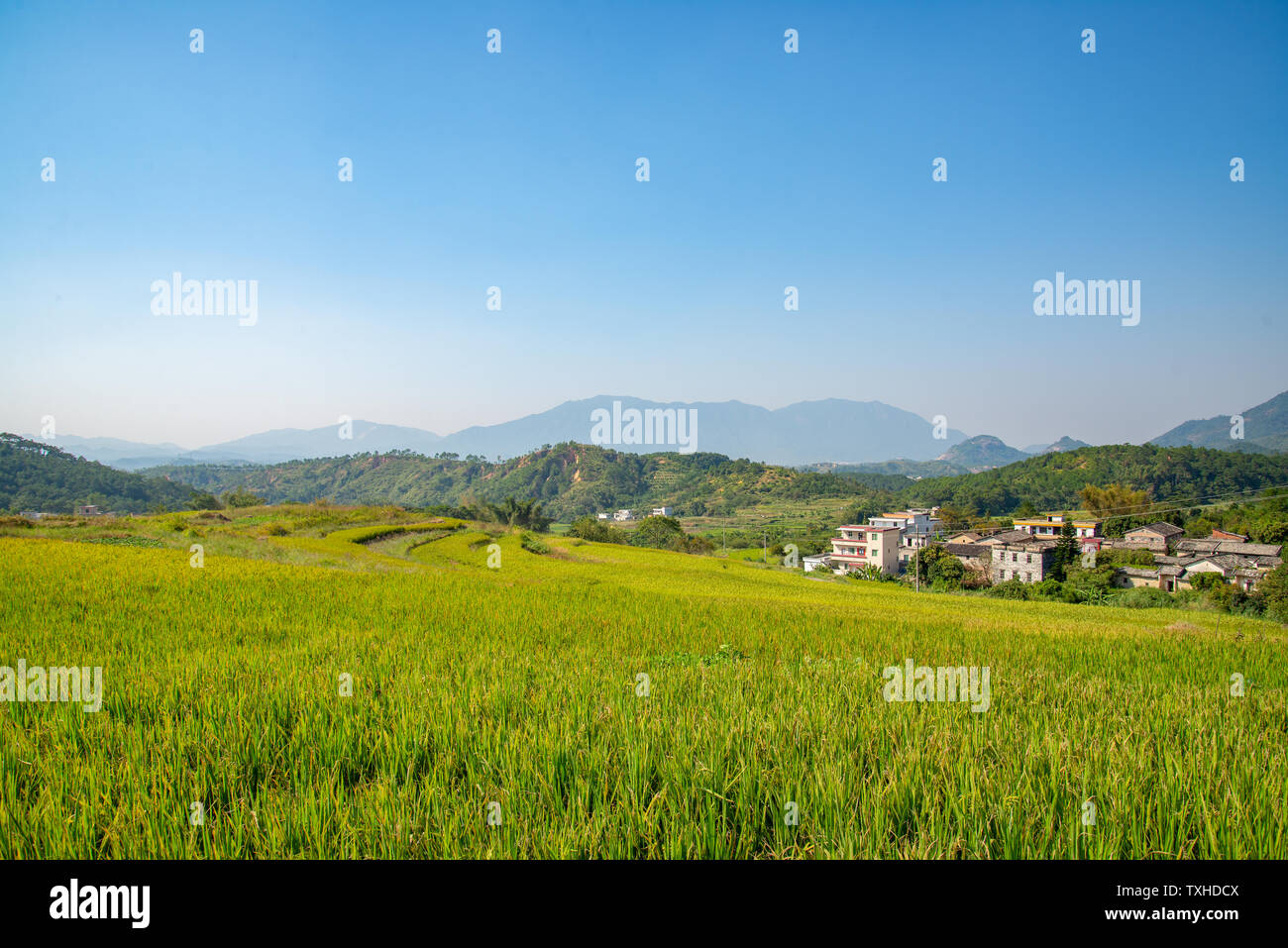 Mountain Valley With Agricultural Crops Stock Photos