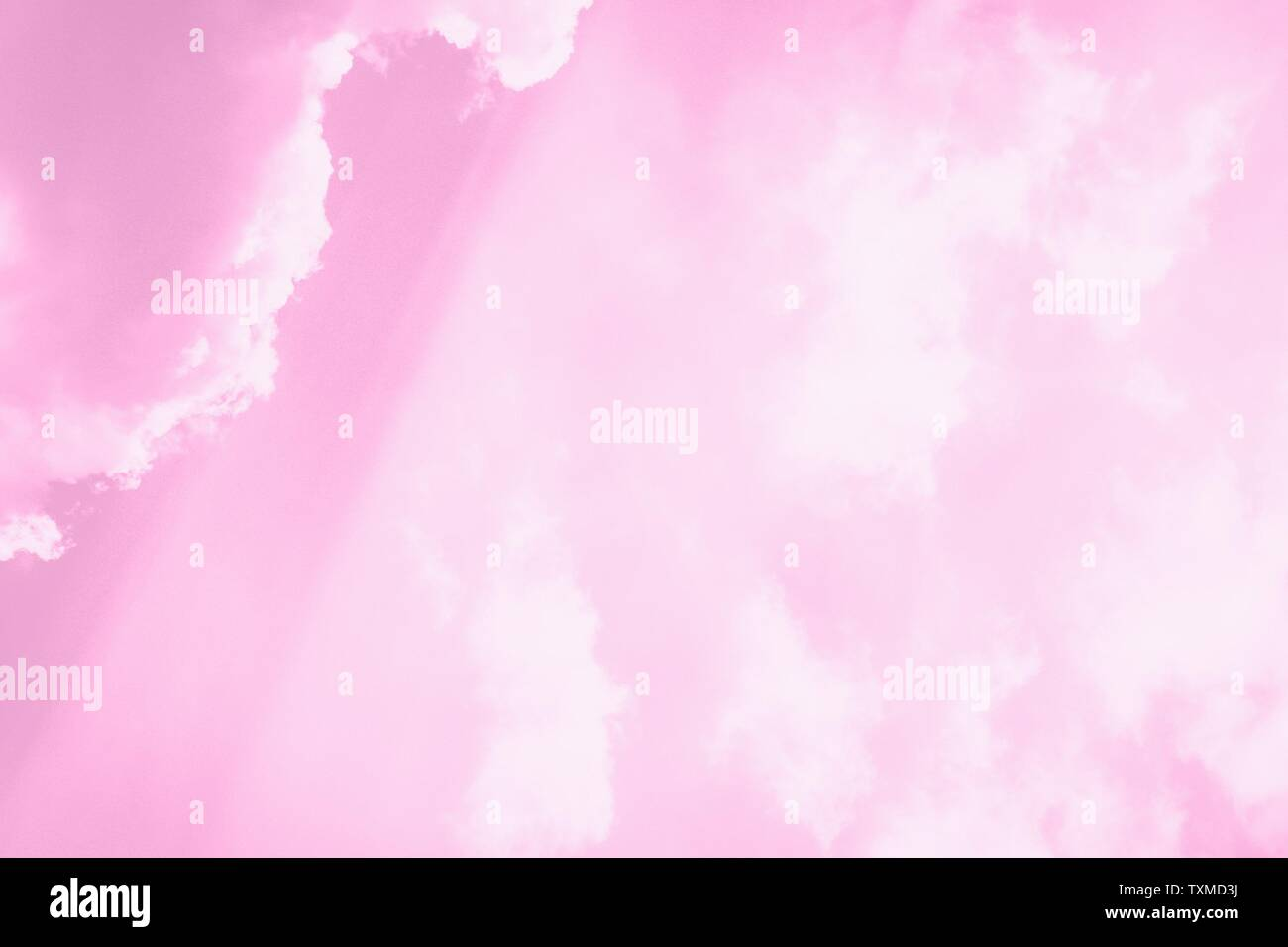 Beautiful white soft fluffy clouds on a sky background. Sunlight, light and shadow. Pink, copy space - Stock Image