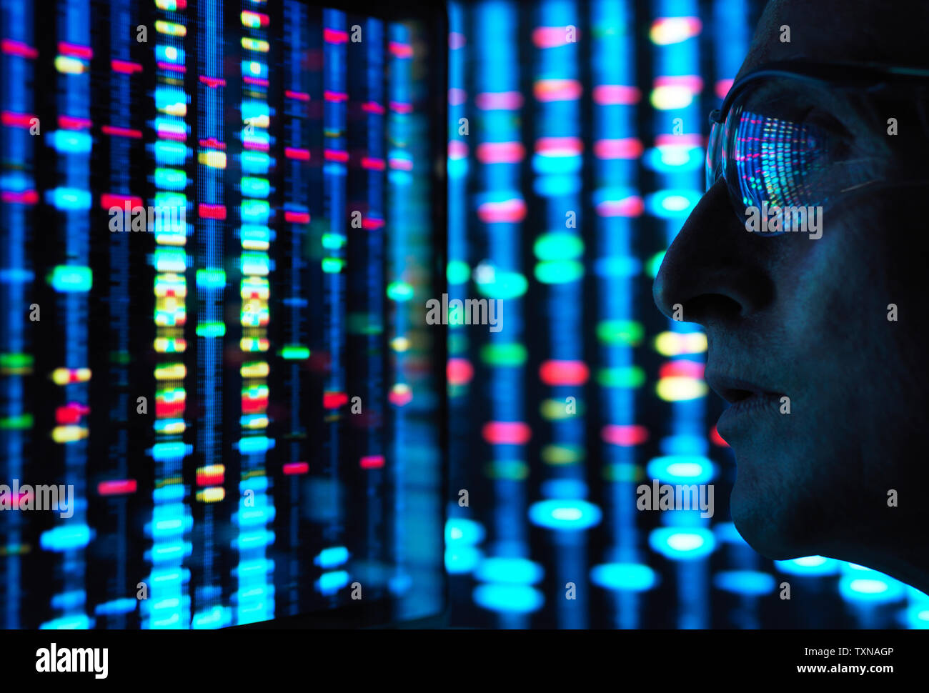 Genetic Research, scientist viewing DNA information on screens Stock Photo