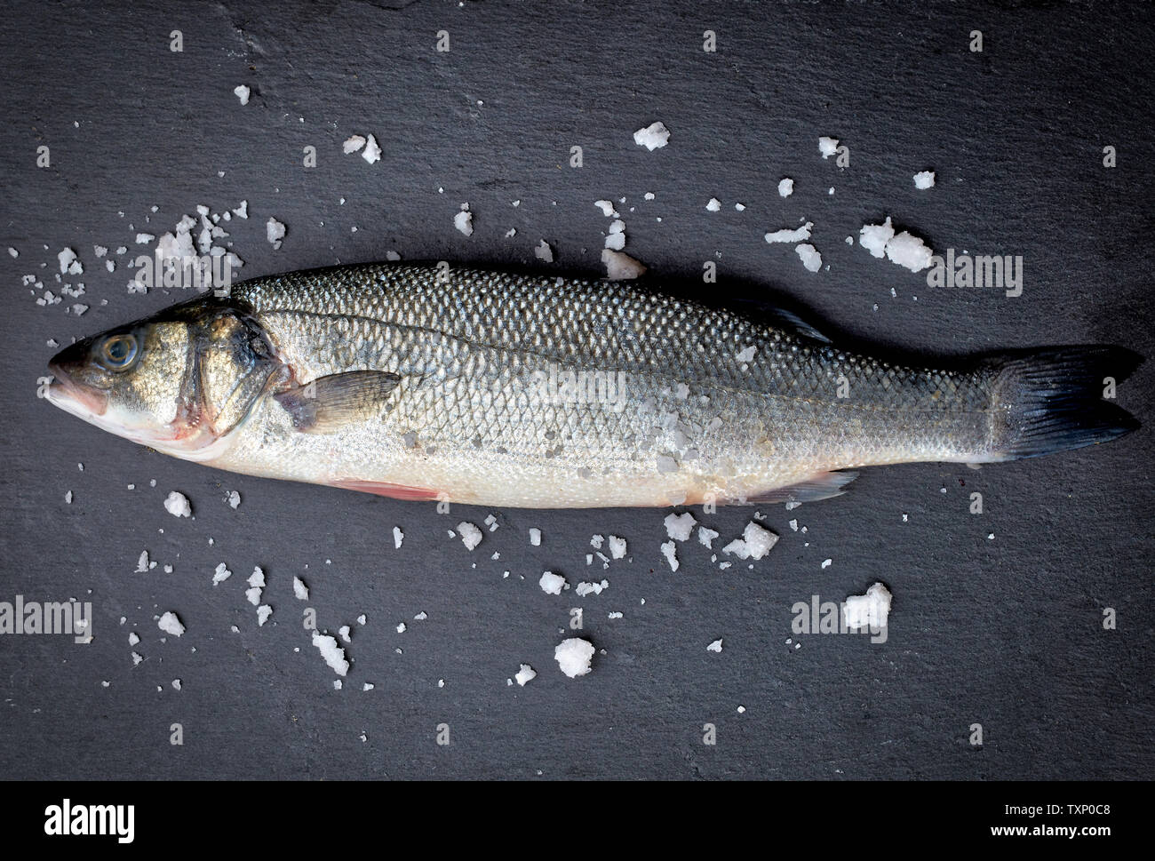 fresh whole sea bass fish with salt on black background, top view - Stock Image