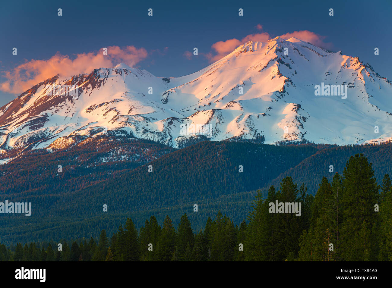 View on Mount Shasta (from Lake Siskiyou). Mt Shasta is a volcano at the southern end of the Cascade Range in Siskiyou County, California. At an eleva - Stock Image