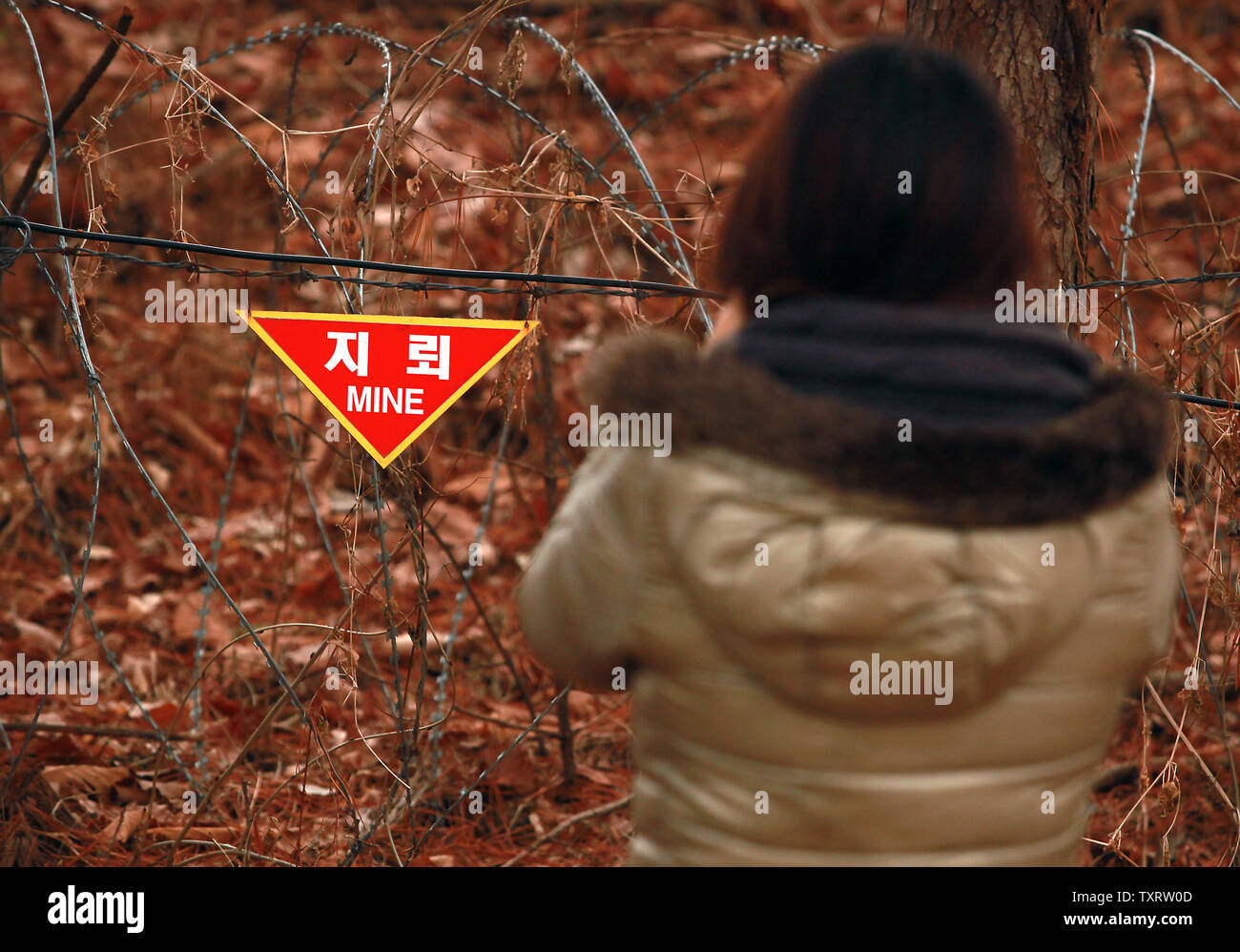 A tourist takes a photograph of a warning sign indicating a mine field lies beyond the rope in part of the Demilitarized Zone (DMZ) near Seoul on January 29, 2013.    UPI/Stephen Shaver - Stock Image